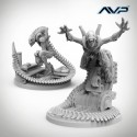Alien vs Predator: Alien Evolved Warriors UniCast