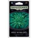 Arkham Horror: The Card Game LCG - Where the Gods Dwell